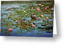 Water Lily Ballet Greeting Card