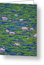 Water Lily Flowers Happy Water Lilies Fine Art Prints Giclee High Quality Impressive Color Lotuses Greeting Card