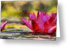 Water Lily - Id 16235-220419-3506 Greeting Card
