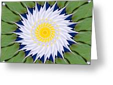 Water Lily Kaleidoscope Greeting Card