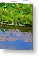 Water Lily Sky Greeting Card by Nada Frazier