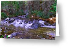 Water Never Tires Greeting Card