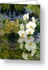 Water Orchid Greeting Card