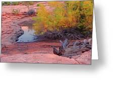 Magic Puddle At Canyon Lands Greeting Card