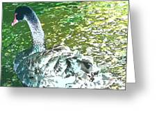 Water Queen Greeting Card