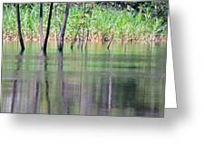 Water Reflections On Amazon River Greeting Card