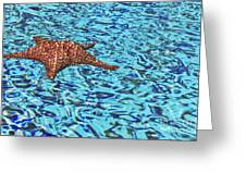 Water Ripples Greeting Card