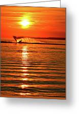 Water Skiing At Sunrise  Greeting Card