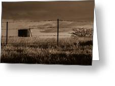 Water Tank On The Pasture  Greeting Card