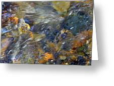 Water Whimsy 173 Greeting Card