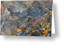 Water Whimsy 176 Greeting Card