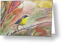 Watercolor - Common Yellowthroat Greeting Card