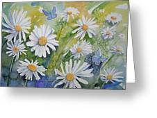 Watercolor - Daisies And Common Blue Butterflies Greeting Card