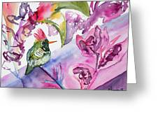 Watercolor - Frilled Coquette Hummingbird With Colorful Background Greeting Card