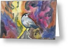 Watercolor - Gray Catbird Greeting Card