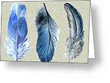 Watercolor Hand Painted Feathers Greeting Card