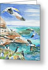 Watercolor - Seabirds Of The North Atlantic Greeting Card