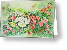 Watercolor Series 4 Greeting Card