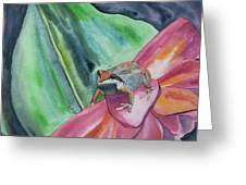 Watercolor - Small Tree Frog On A Colorful Flower Greeting Card