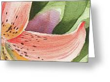 Watercolor Tiger Lily Dance Of Petals Close Up  Greeting Card