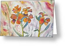 Watercolor - Wallflower Wildflowers Greeting Card