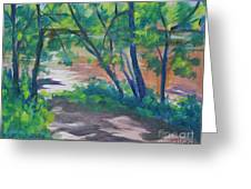 Watercress Beach On The Current River   Greeting Card