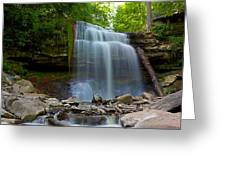 Waterdown Falls Greeting Card