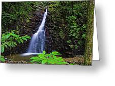 Waterfall-1-st Lucia Greeting Card