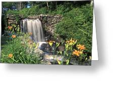 Waterfall And Lilies Moore State Park Greeting Card