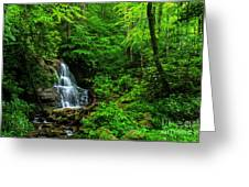 Waterfall And Rhododendron In Bloom Greeting Card