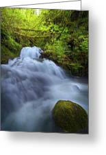 Waterfall At Shepperds Dell Falls Greeting Card