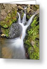 Waterfall Atop Wolf Creek Pass - Colorado - Nature Greeting Card