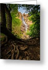 Waterfall Canyon Greeting Card
