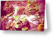 Waterfall Garden Pink Falls Greeting Card