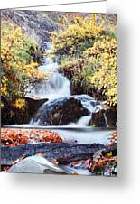 Waterfall In Autumn Greeting Card