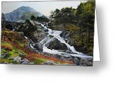 Waterfall In February. Greeting Card