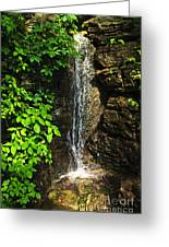 Waterfall In Forest Greeting Card by Elena Elisseeva