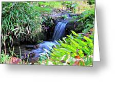 Waterfall In The Fern Garden Greeting Card