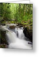 Waterfall In The Forest Greeting Card
