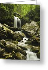 Waterfall In The Spring Greeting Card by Andrew Soundarajan