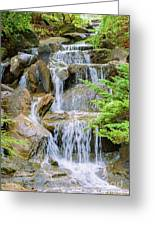 Waterfall In The Vandusen Botanical Garden 1 Greeting Card