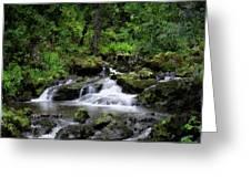 Waterfall Medley Greeting Card