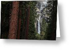 Waterfall Of Pines Greeting Card