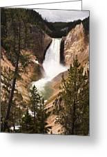 Waterfall Of Yellowstone Greeting Card
