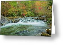 Waterfall On Little Pigeon River Smoky Mountains Greeting Card