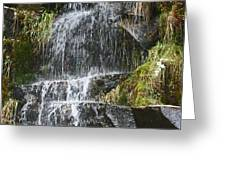 Waterfall On Mount Ranier Greeting Card