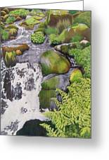 Waterfall On Skye Greeting Card