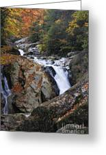 Waterfall On West Fork French Broad River Greeting Card
