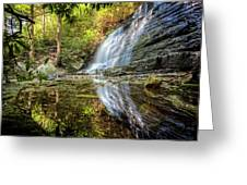 Waterfall Reflections Greeting Card