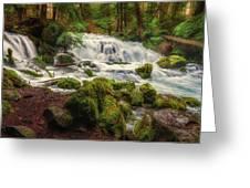 Waterfall Reverie Greeting Card